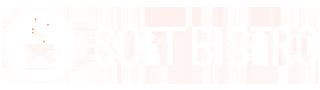 Product & Custom Software Development Company | SOFT BISTRO